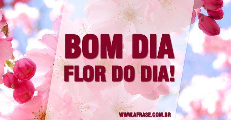 A Frase Flor