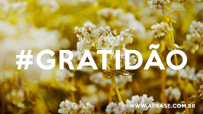 A Frase Gratidão
